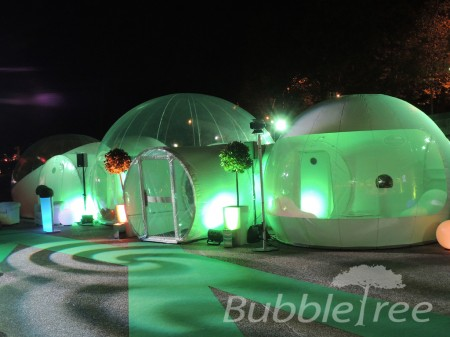 bubbletree_bubblestar_2