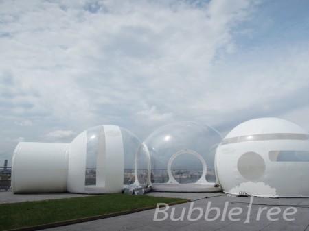 bubbletree_bubblestripe_3