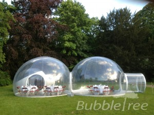 bubbletree_cristalbubble_1