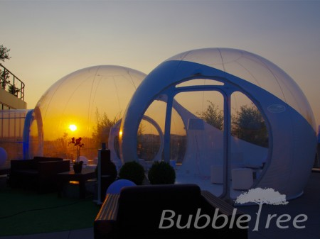 bubbletree_event_incentive_team_building_6