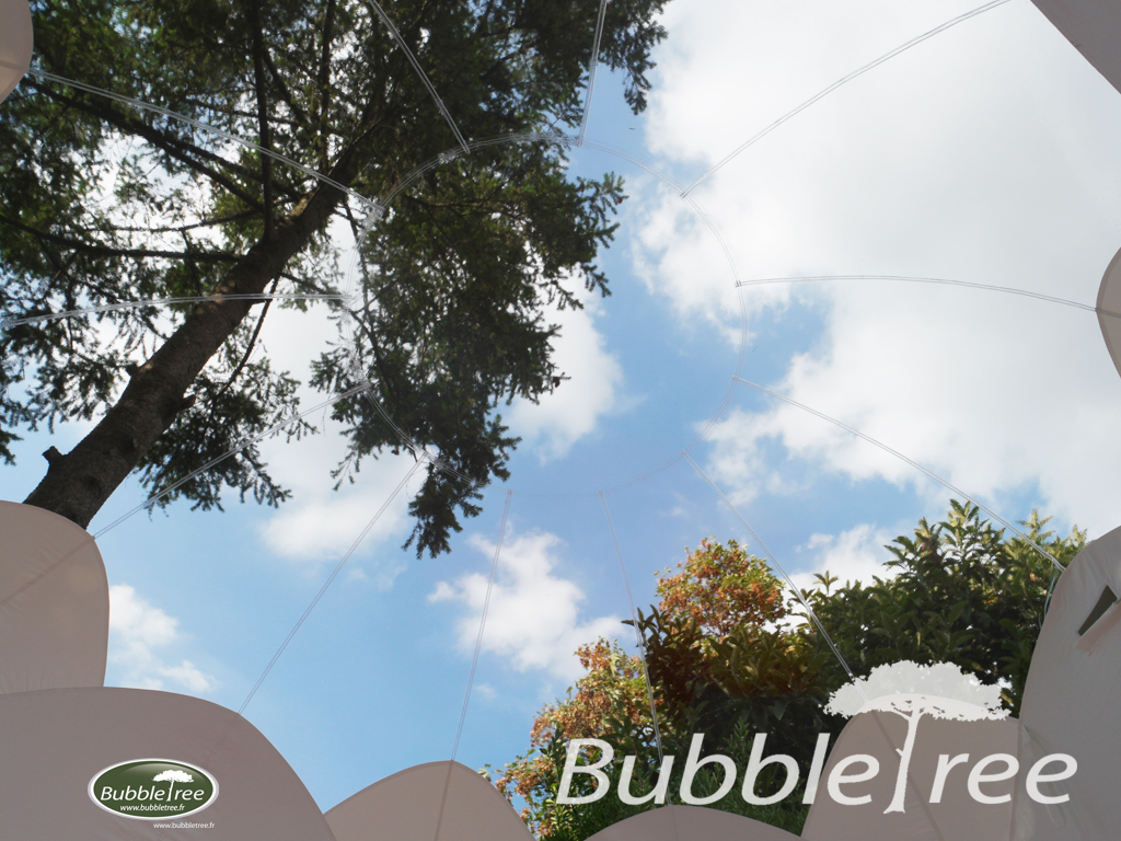High Quality BubbleTree : Unusual Travel Market By Capital (M6 Channel)