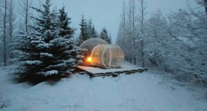 Watch the Northern Lights in Iceland – BubbleTree Bubbles by Thrillist