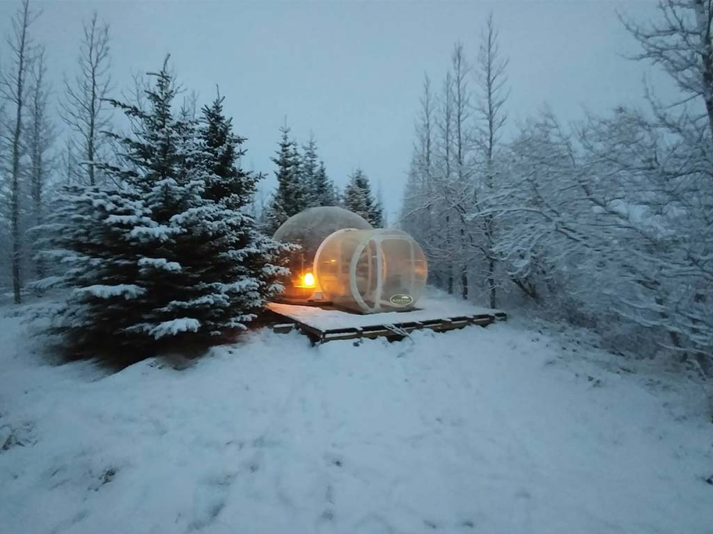 Watch The Northern Lights In Iceland U2013 BubbleTree Bubbles By Thrillist