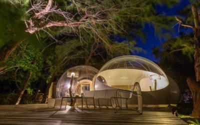 Découvrez notre éco-responsable Bubble Lodge sur l'île Maurice.